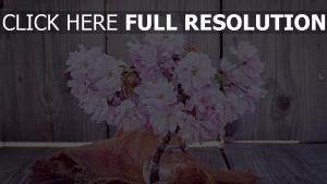 strauß vase blumen kirsche