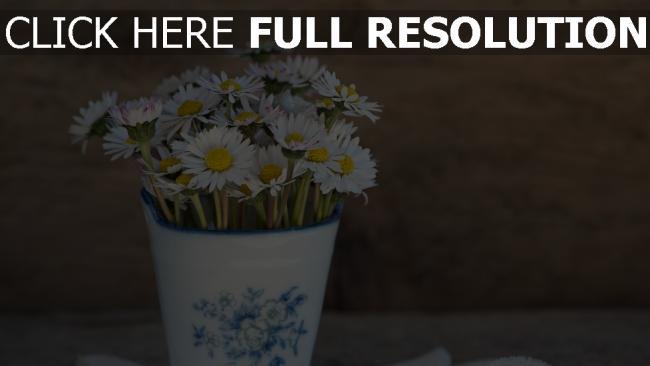 hd hintergrundbilder serviette vase gänseblümchen
