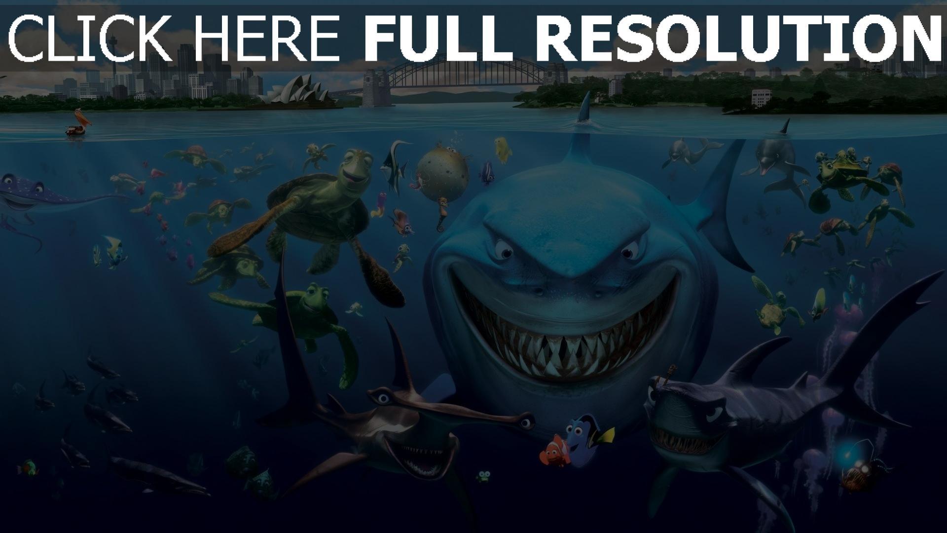 HD Hintergrundbilder findet nemo hai fische schildkröte ...