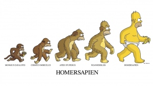 homer affe mann evolution
