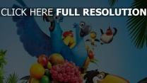 rio papageien obst palmen