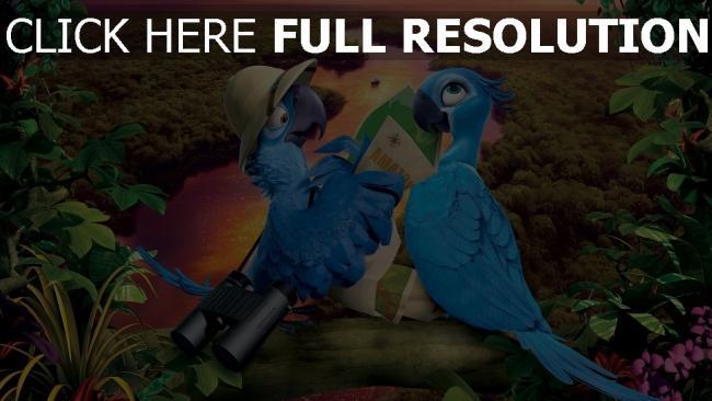 hd hintergrundbilder rio 2 papageien aras vögel karte fluss wald