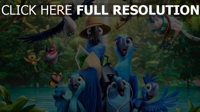 hd hintergrundbilder rio 2 papageien aras kompanie vögel