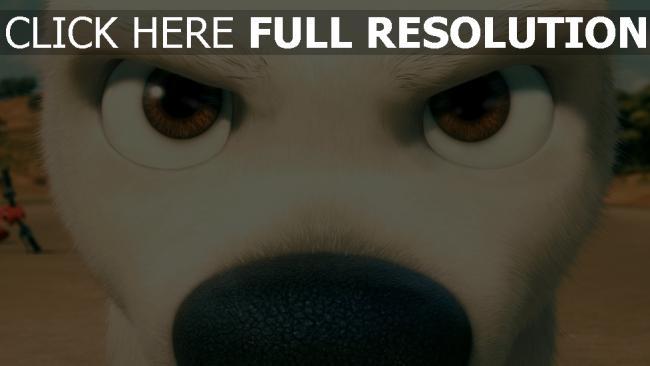 hd hintergrundbilder hund gesicht bolt disney