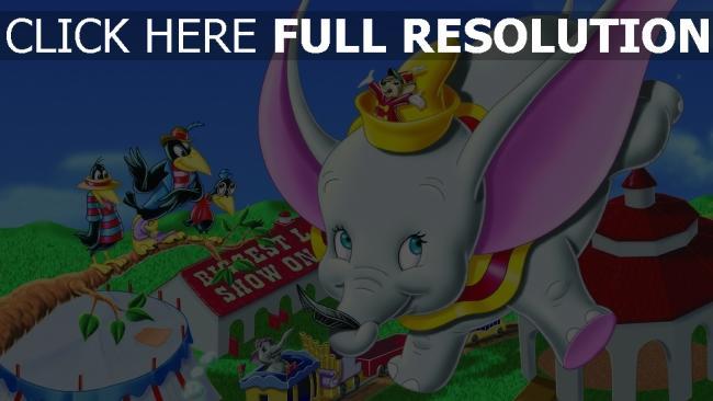hd hintergrundbilder timothy disney krähe maus dumbo feder elefant