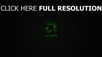 amd logo emblem inschrift grün