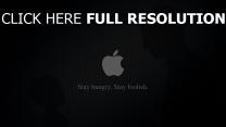 apple emblem logo grau weiß