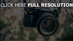 blumen kamera garten objektiv canon farbe