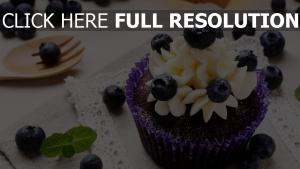 heidelbeeren sahne muffin obst