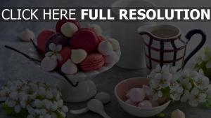blumen makronen baiser süß
