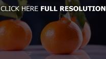 mandarinen blätter schalen orangen