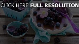 dessert brombeere platte blaubeeren beeren