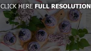 creme lila heidelbeeren muffins