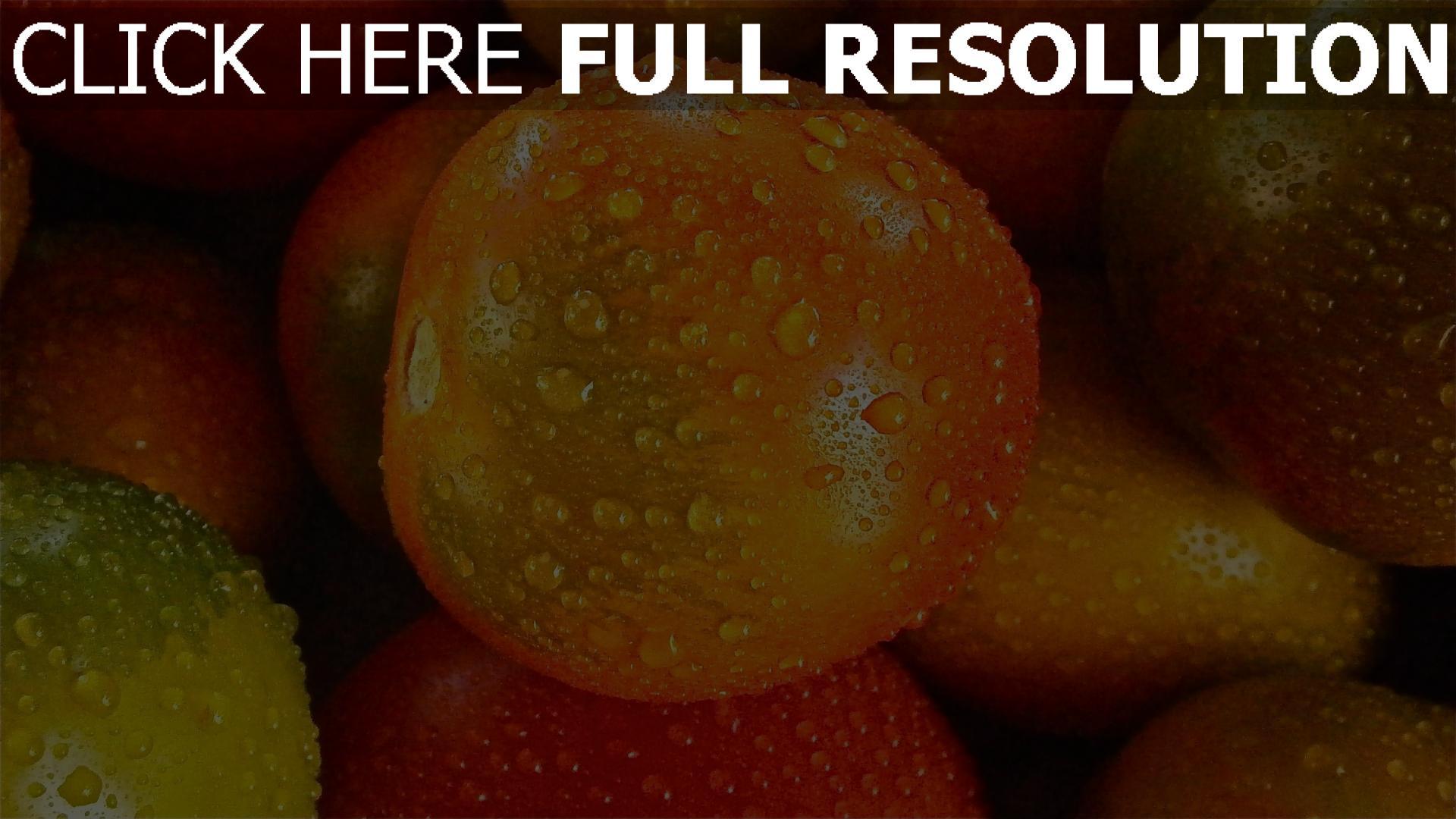 hd hintergrundbilder gemüse tropfen tomate 1920x1080