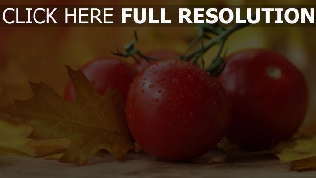 hd hintergrundbilder gemüse tropfen tomaten