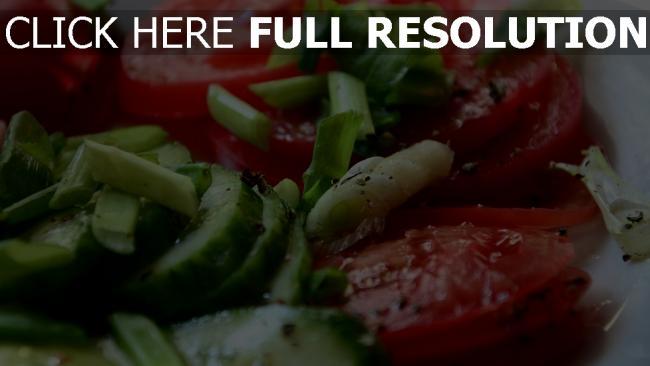 hd hintergrundbilder kräuter gurken butter salat tomaten