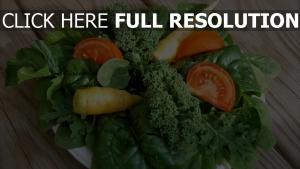 karotten spinat salat tomaten gemüse