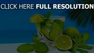 cocktail limette trinken minze