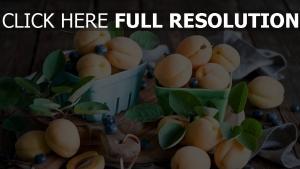 aprikosen beeren zweige blätter tisch