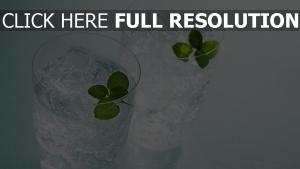 wasser eis glas glas mint