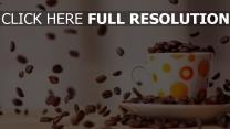kaffee bohnen tasse untertasse