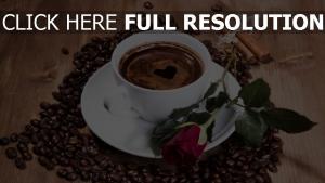 kaffee bohnen schaum herz rose zimt
