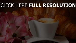 kaffee schaum blumen brötchen croissants