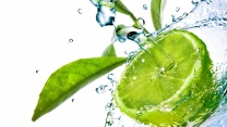 lime wasser tropfen blätter