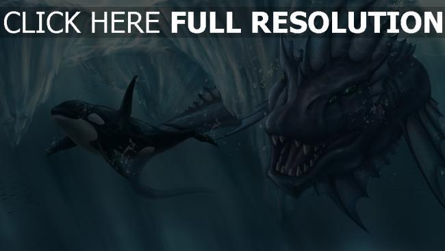 hd hintergrundbilder wal meer gletscher mund kreatur