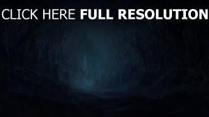 wald dunkel licht schloss steine