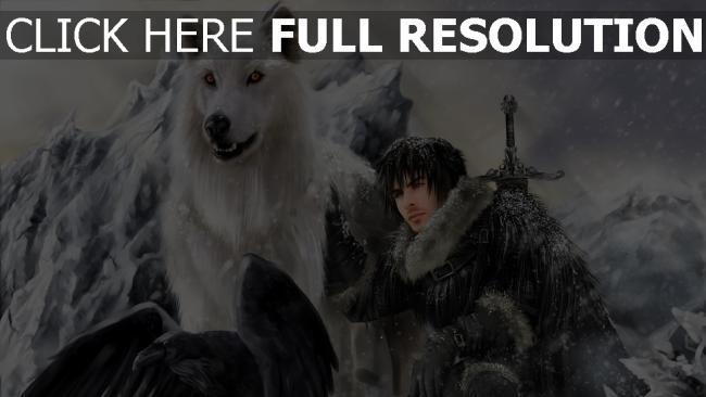 hd hintergrundbilder wolf weiß krähe mensch berge schnee