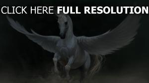 pegasus weiß pferd flügel