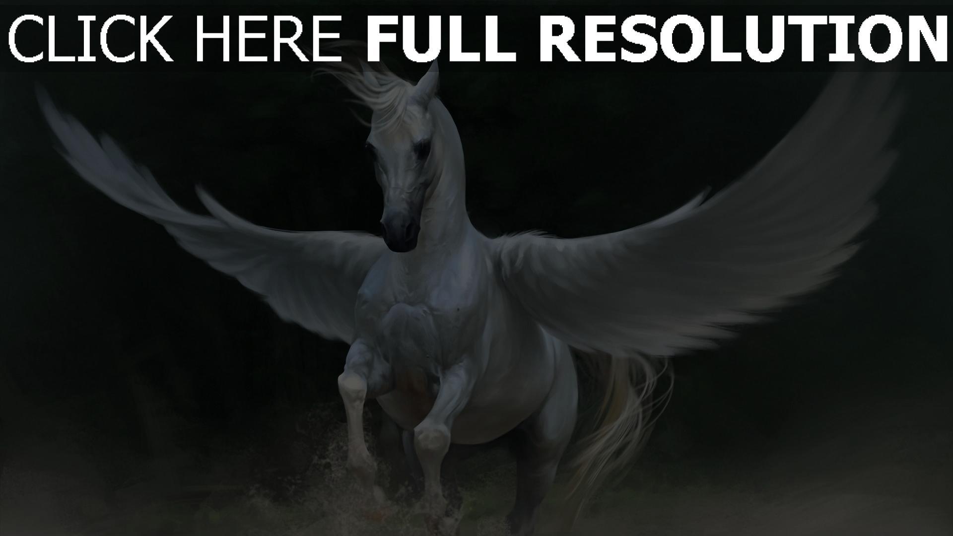 HD Hintergrundbilder Pegasus Weiß Pferd Flügel, Desktop
