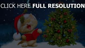 weihnachten fichte katze himmel sterne