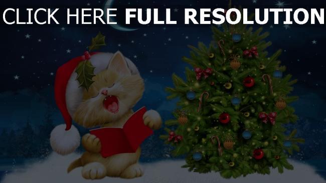 hd hintergrundbilder weihnachten fichte katze himmel sterne