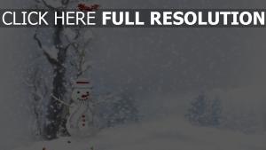 winter schnee schneemann bäume neues jahr