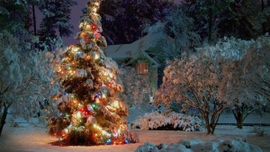 schnee winter ferien fichte girlanden weihnachts