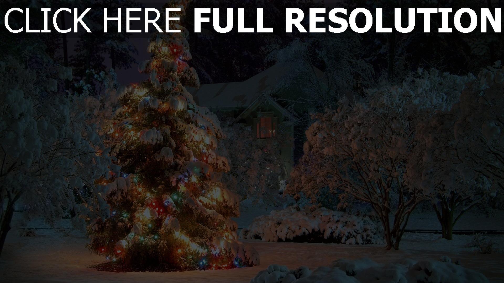 HD Hintergrundbilder schnee winter ferien fichte girlanden ...