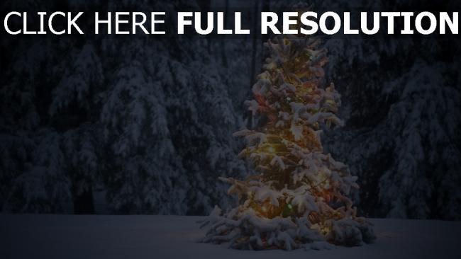 hd hintergrundbilder wald tanne girlande lichtern schnee winter