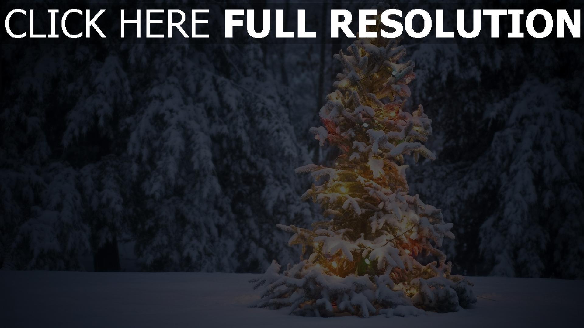 HD Hintergrundbilder wald tanne girlande lichtern schnee winter ...