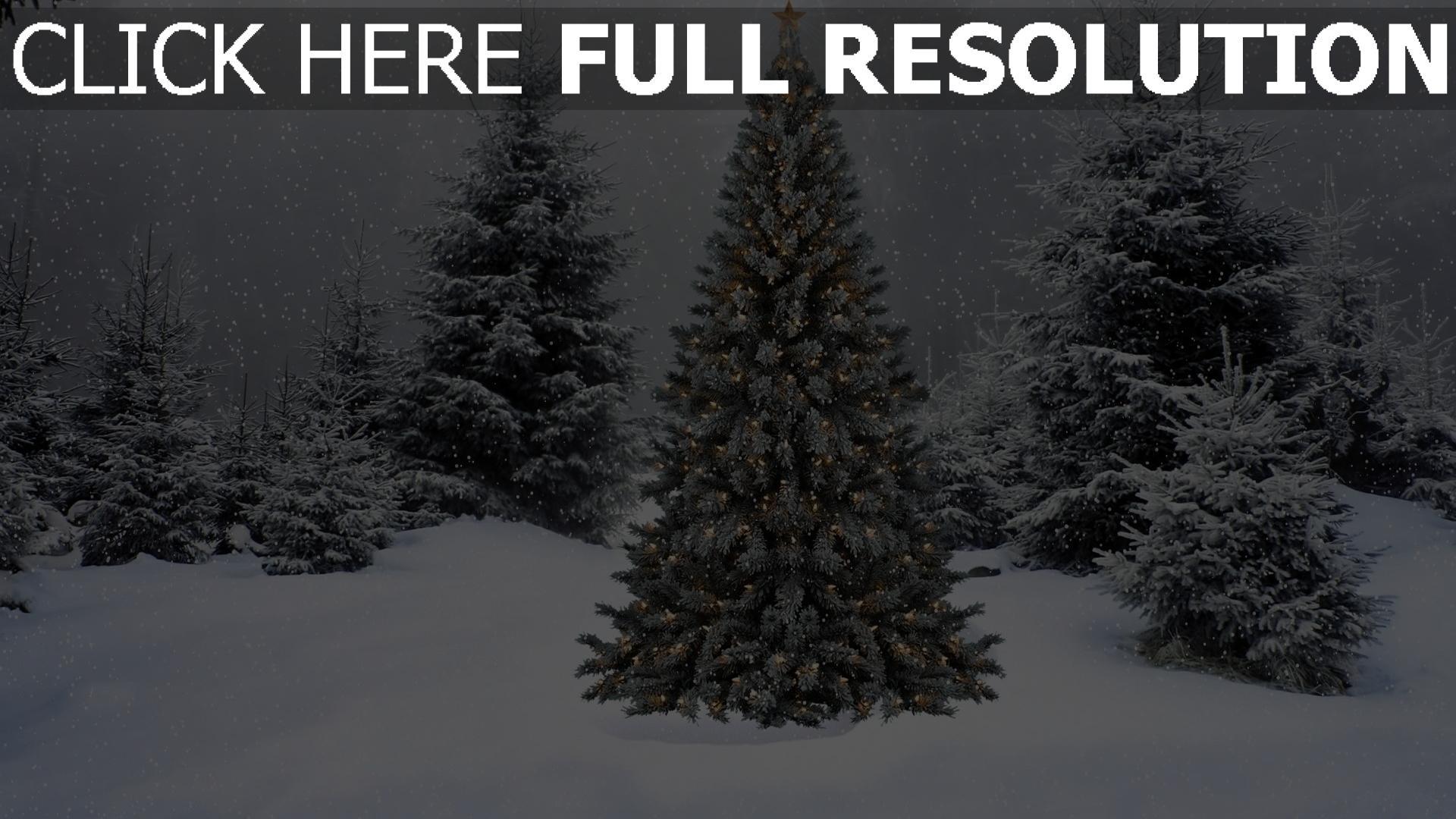 hd hintergrundbilder schnee winter tanne girlande wald neujahr weihnachten 1920x1080