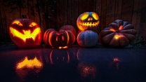 kürbis halloween köpfe ferien