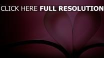 romantik herz seiten buch