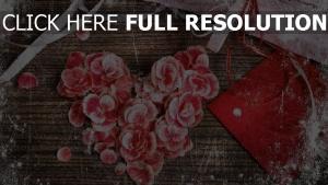 valentinstag romanze herz valentine petals