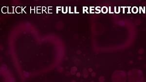 valentinstag romanze herzen valentine