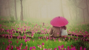 valentinstag romanze blumen paar blumen regen