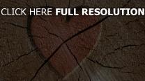 valentinstag herz romantik schnitt holz