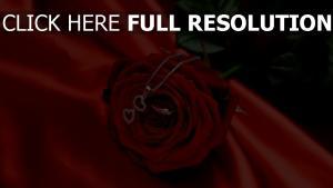 valentinstag rose seide rote anhänger kette