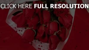 valentinstag blumenstrauß rosen blumen rot