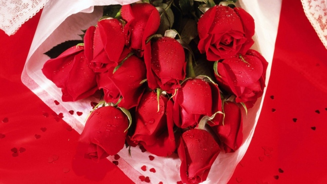 hd hintergrundbilder valentinstag blumenstrauß rosen blumen rot